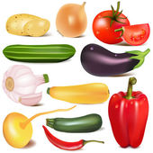 Set vegetable with joint by turnip eggplant — Stockvector