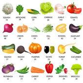 Conjunto de verdura con calorías en blanco — Vector de stock