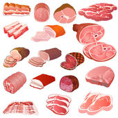 Set of different kinds of meat — Stock Vector