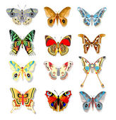 Set of colorful butterflies on a white background — Stock Vector