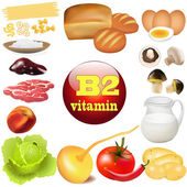 Of two vitamin b in plant and animal products The origin of the — Stock Vector