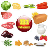 vitamin b one in plant and animal products The origin of the — Stock Vector