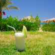 Tasty pina colada on the grass. - Stock Photo