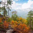 Autumn in the mountains — Stock Photo #21554387