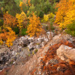 Autumn in the Mountains — Stock Photo #21554483