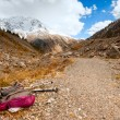 Trekking in the mountains — Stock Photo