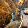 SUV into the Caucasus mountains on a mountain road — Stock Photo