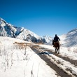 Rider in the mountains of Georgia — Stock Photo
