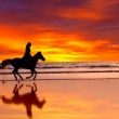 Silhouette of the girl skipping on a horse on an ocean coast on a sunset — Stock Photo