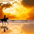 Silhouette of the girl skipping on a horse on an ocean coast on a sunset - Stock Photo