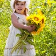 Little girl with a big bouquet of sunflowers in the field — Stock Photo #12572088