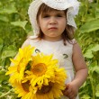 Little girl with a big bouquet of sunflowers in the field — Stock Photo #12572105