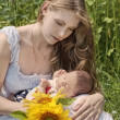 Young mother with the baby among blossoming sunflowers — Stock Photo #12572322