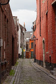 Narrow cobblestone street in a medieval quarter of the city of Gent — Стоковое фото