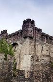Gravestin's medieval castle in Ghent — Stock fotografie