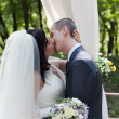 Newly-married couple kiss after ceremony of wedding — Stock Photo #13576899