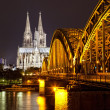 Cologne Gothic Cathedral at night as seen from the Rhein — Stock Photo #13578898