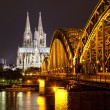 Cologne Gothic Cathedral at night as seen from the Rhein - Stock Photo