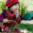 Little girl sits on a grass near to a basket with vegetables and eats carrots — Stock Photo #13579663