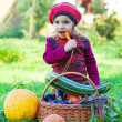Little girl sits on a grass near to a basket with vegetables and eats carrots — ストック写真