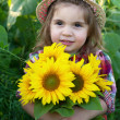 Stock Photo: Little girl with a big bouquet of sunflowers in the field