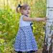 Little girl in a years dress costs at a birch — Stok fotoğraf