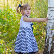 Little girl in a years dress costs at a birch — Stock Photo