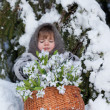 Little girl in a winter wood with the big basket of snowdrops — Stock Photo #13579697