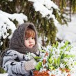 Little girl in a winter wood with the big basket of snowdrops — Stock Photo #13579700