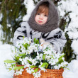 Little girl in a winter wood with the big basket of snowdrops — Stock Photo #13579702