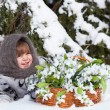 Little girl in a winter wood with the big basket of snowdrops — Foto Stock