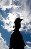 Gökyüzü bulutlu bir at silüeti — Stok fotoğraf