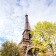 Eiffel Tower against the blue sky and clouds. Paris. France — Stock Photo #14081029