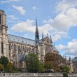 Notre Dame (Paris) along the Seine river — Stok fotoğraf