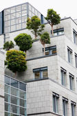 Trees on a roof of office building — Stock Photo