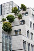 在办公大楼的屋顶上的树 — 图库照片