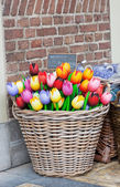 Big basket with tulips - traditional souvenirs from Holland - at shop doors — Стоковое фото