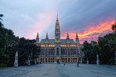 Vysoká gotická budova vídeňské radnice, rakousko — Stock fotografie