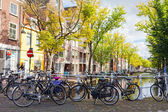 DELFT, NETHERLANDS - SEPTEMBER 27. Parking of bicycles on the bank of the channel in Delft, Nideranda, September 27, 2012. The population as of January 1, 2008 made 96 168 — Stock Photo
