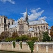 Cathedral of Notre Dame de Paris sunny autumn afternoon — Stok fotoğraf