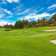 Golf course with palm trees over blue cloudy sky — ストック写真
