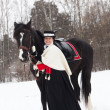 Stok fotoğraf: Girl keeps Oryol trotter in black riding habit
