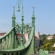 Budapest, Hungary, view of Freedom bridge — Stock fotografie