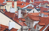 Top view on tile red roofs, Prague — Stock Photo