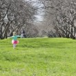 little cheerful girl runs on park in the direction of the camera — Stock Video