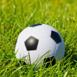 Soccerball — Stock Photo #26454849
