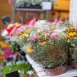 Street show-window of flower shop in Europe — Stock Photo