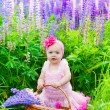 Little girl with a basket among blossoming lupines — Stock Photo