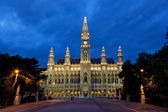 Tall gothic building of Vienna city hall, Austria — Stock fotografie