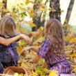 Happy mum and the daughter play autumn park on the fallen down foliage — Stock Photo #28192429
